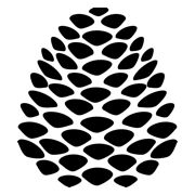 Black cone logo (180x180)